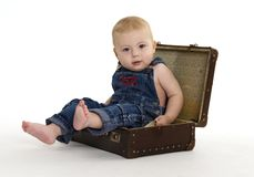 Valuable luggage. One year old boy sitting in a suitcase Stock Photos