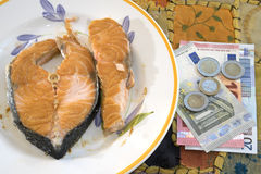 Valuable salmon fillet. Concept of valuable fish with salmon fillet near some money Stock Photography