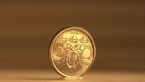 Value the 10 Centavos Brazilian Coin. Manage to value the Brazilian 10 Centavos with its national emblem stock video
