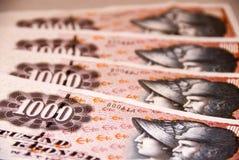 Valuta danese Immagini Stock Libere da Diritti