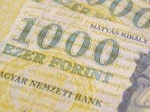 Valuta del HUF Immagini Stock Libere da Diritti