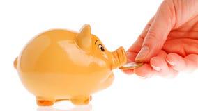 Valuta del porcellino salvadanaio, della mano e dell'euro Immagine Stock