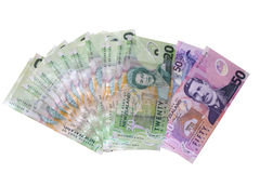Valuta della Nuova Zelanda Immagini Stock