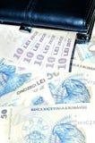 Valuta estera Fotografia Stock