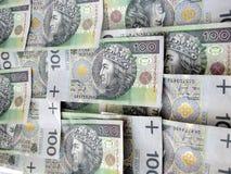 Valuta polacca Fotografie Stock