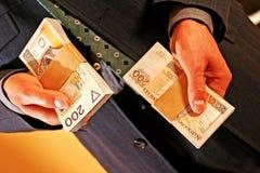 Valuta polacca Immagini Stock