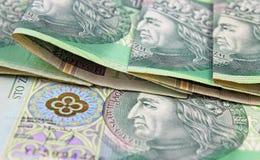 Valuta polacca (PLN) Immagini Stock