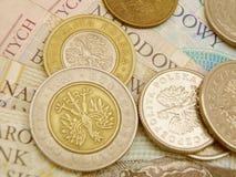valuta polerad zloty Royaltyfri Fotografi