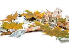 Valuta su fondo bianco immagine stock libera da diritti