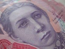 Valuta ucraina - hryvnia Immagine Stock Libera da Diritti