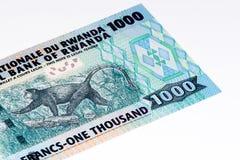 Valutasedel av Afrika Royaltyfri Bild