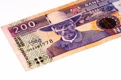 Valutasedel av Afrika Arkivbild