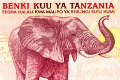 Valutasedel av Afrika fotografering för bildbyråer