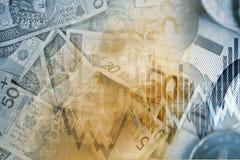 Valutautbyte för euro PLN Royaltyfri Bild