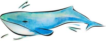 Valvattenfärgillustration, havsdjur, blå havinvånare, undervattens- fauna royaltyfri illustrationer