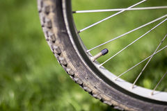 Valve of a bicycle wheel Stock Image