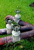 Valves d'angle spéciales, valves de chrome, valves de l'eau, Image stock
