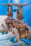 Valves Royalty Free Stock Image