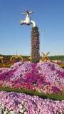 Valvola dell'acqua dei fiori Fotografie Stock Libere da Diritti
