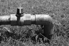 Valvola dell'acqua su un fondo dell'erba Fotografia Stock