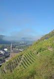 Valwig, долина Mosel, Германия стоковое фото