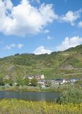 Valwig Mosel flod, Rheinland-Pfalz, Tyskland royaltyfri fotografi