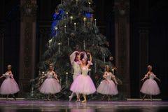 Valzer dei fiocchi di neve il secondo regno della caramella del campo di atto secondo - le schiaccianoci di balletto Fotografie Stock Libere da Diritti