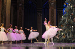 Valzer dei fiocchi di neve il secondo regno della caramella del campo di atto secondo - le schiaccianoci di balletto Immagini Stock Libere da Diritti