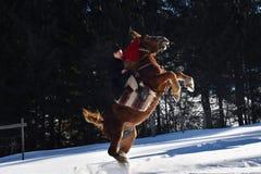 Vama, Roemenië, 20 Januari, 2017: Mens en paard die traditionele kleren in Bucovina dragen royalty-vrije stock afbeelding