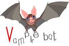Vampire bat with title Royalty Free Stock Photo