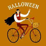 Vampire on city bicycle with pumpkin. Vector illustration with Dracula on city bicycle with pumpkin in basket. Halloween illustration Stock Images