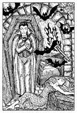 Vampire. Engraved fantasy illustration. Vampire in coffin, bats and bitten woman. Fantasy magic creatures collection. Hand drawn vector illustration. Engraved Stock Photography