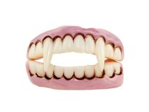 Vampire Fangs. Isolated on a white background Stock Images