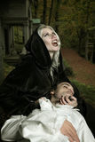 Vampire lady attack. S her prey . Horror and Halloween concept royalty free stock image