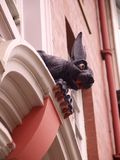 Vampire Rabbit. Upward view of architectural feature taken in Newcastle, featuring gothic gargoyle in Stock Image