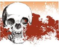 Vampire skull demon illustration Royalty Free Stock Images