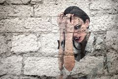 Vampire on the wall Royalty Free Stock Photos