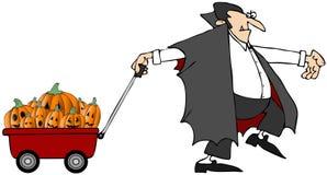Vampiro che tira le zucche Immagini Stock Libere da Diritti