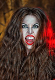 Vampiro gritando Imagens de Stock