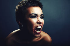 Vampyr Royaltyfria Foton