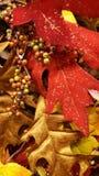 Van achtergrond Kerstmisdecoratie dalingsbladeren Royalty-vrije Stock Fotografie