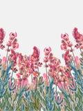 Van achtergrond lavendelvecor roze kleurrijke bloemkaart royalty-vrije illustratie