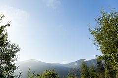 Van de de aardpijnboom van de de herfstkarpaten de bos, blauwe hemel en bergen Exemplaarruimte voor tekst stock afbeeldingen