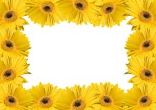Van de achtergrond bloem frames Royalty-vrije Stock Afbeeldingen