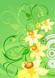 Van de achtergrond bloem ontwerp Vector Illustratie