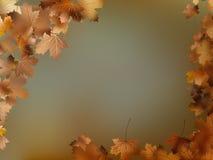 Van de achtergrond herfstbladeren malplaatje. EPS 10 Stock Foto