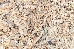 Van de achtergrond herfstbladeren textuur Gevallen gebladerte seizoengebonden samenvatting Stock Fotografie