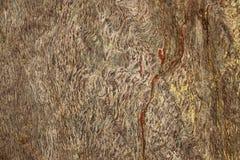 Van de achtergrond rots Textuur royalty-vrije stock foto's