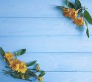 Van de de achtergrond schoonheidszomer van bloemenalstroemeria houten versheidspatroon Stock Fotografie