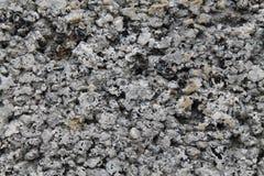 Van de achtergrond steenrots textuur Stock Foto